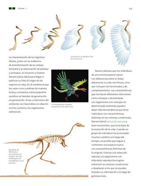 ciencias naturales grado octavo ciencias naturales 6to grado by sbasica issuu