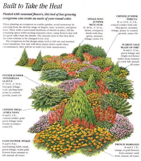 Landscape Ideas Using Evergreens 25 Best Ideas About Evergreen Garden On