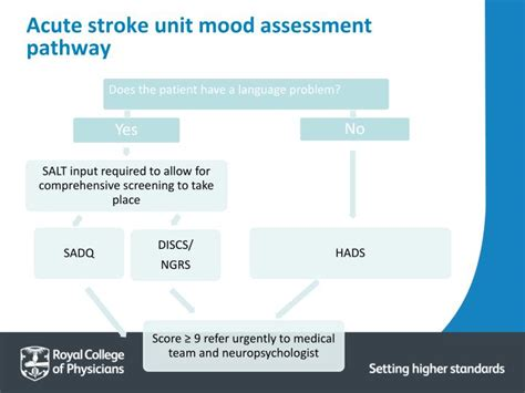 stroke mood swings ppt how to do a quality improvement qi project