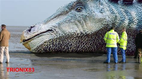 que son imagenes virtuales y reales dinosaurios reales huesos de dinosaurios reales fosiles