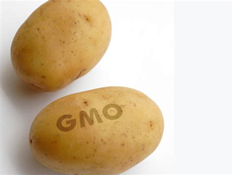 Potato Gene by