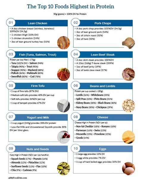 protein food list top 10 foods highest in protein printable one page sheet