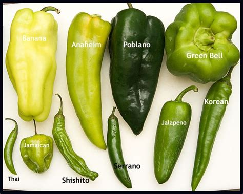 types of garden peppers learn to recognize different pepper varieties their heat