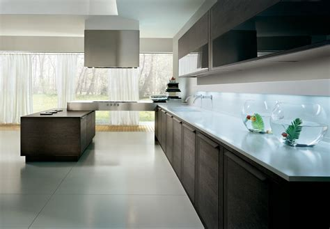 raw kitchen cabinets modern kitchen cabinets ideas