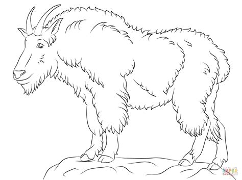 Coloring Pages Mountain Goat | mountain goat coloring page free printable coloring pages