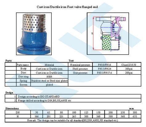 valve products foot valve flanged end
