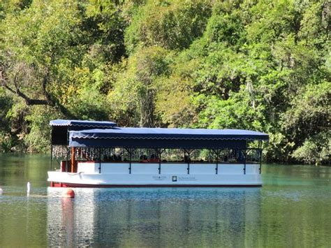 glass bottom boat san marcos texas one of the glass bottom boats picture of aquarena