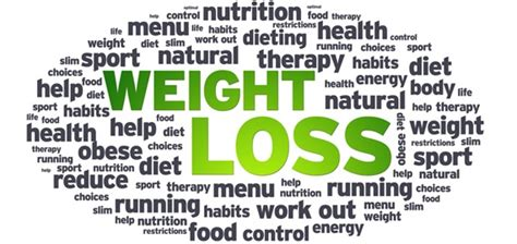 Buku Dont Sweat Guide To Weight Loss weight loss how the ultimate guide loseweightveryfast