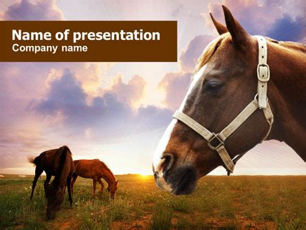 powerpoint themes horse horses presentation template for powerpoint and keynote