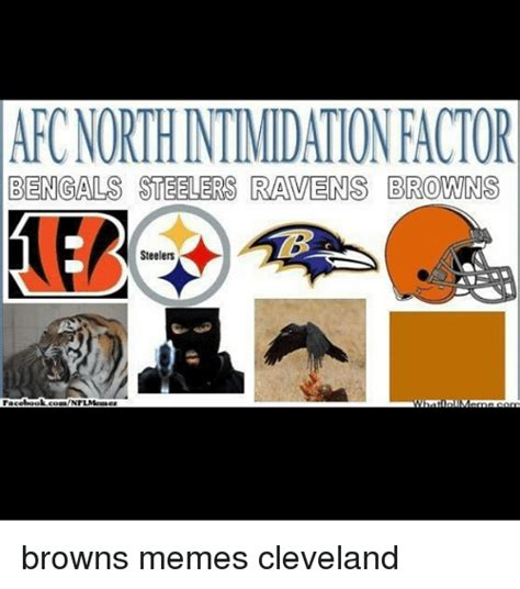 Steelers Vs Ravens Meme - 25 best memes about browns steelers browns steelers memes