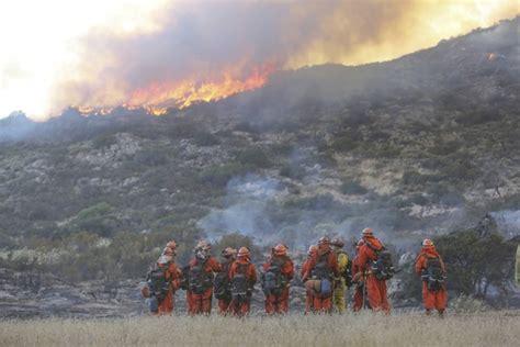film panas mexico satu harapan kebakaran hutan landa as akibat gelombang panas