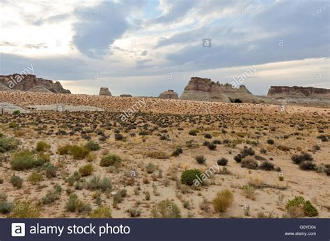 desert landscape with different types of topography