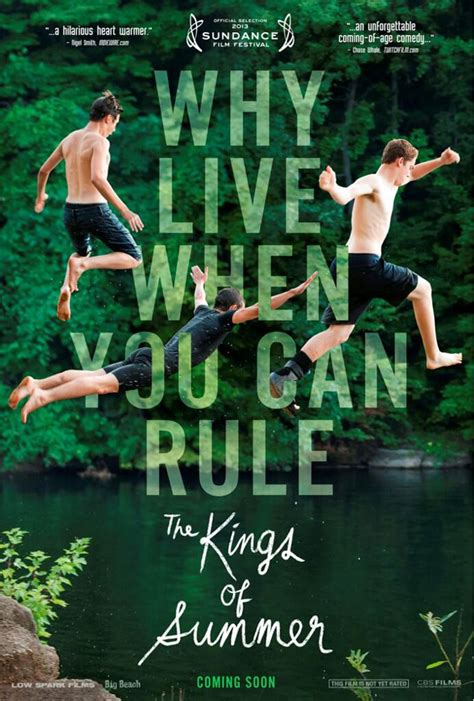 kings of summer the kings of summer poster