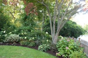 Landscape Ideas On Houzz Houzz Landscaping Landscape Traditional With Grass Foliage