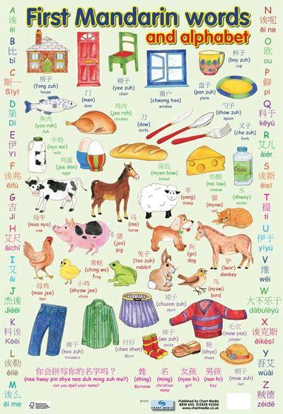 Applied Mandarin Infonesian Inglish mandarin words alphabet poster linguist