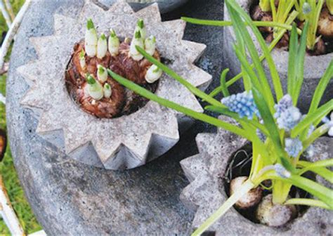 vaso fai da te come creare vasi per piante fai da te kreattivablog