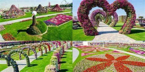 imagenes de jardines turisticos dubai miracle garden el jard 237 n de flores m 225 s grande del