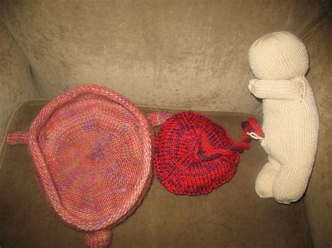 knitting pattern uterus 8 best images about anatomy on pinterest births inside