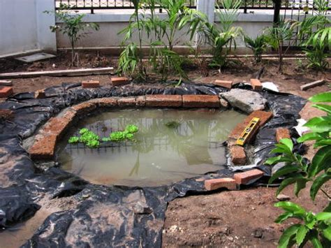 backyard pond liners backyard aquaponics view topic pond liner anyone built a fish tank with it