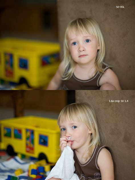 50mm 1 4 On Frame Vs Crop by Canon 85mm 1 2 Vs 50 1 4 On Crop Photo Net