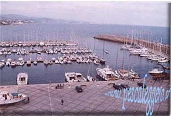 porto di santa marinella pescare nel porto di santa marinella www pescaleggero it