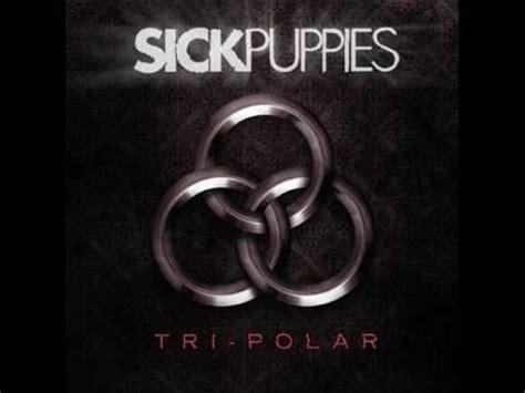 sick puppies maybe lyrics maybe by sick puppies with lyrics