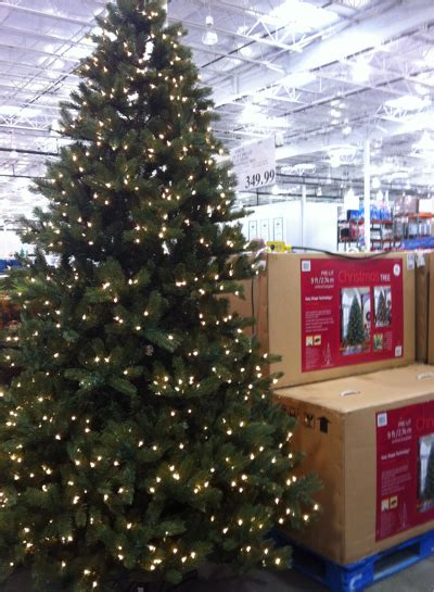 9 ft costco christmas tree costco tree prices decoration prices
