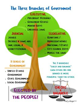 section quiz 3 2 three branches of government the three branches of government tree poster by kari lynn