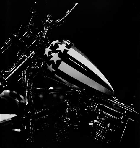 Born Live Die born live die free photograph by gregory heath