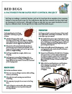 bed bug preparation pin bed bug preparation bites pictures on pinterest