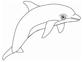 color page free printable dolphin coloring pages for animal place