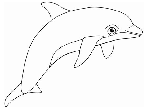 Dolphin Color Pages Free Printable Dolphin Coloring Pages For Kids