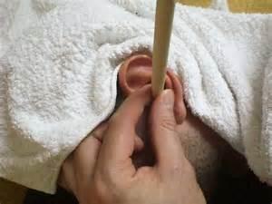 galeries la galerie du myosotis bougies d oreilles