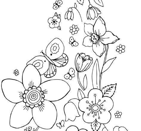 Coloring Pictures Of Flowers And Butterflies by Coloring Pictures Of Flowers And Butterflies Color Bros
