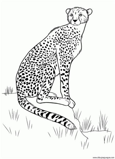 juegos de felinos para colorear imprimir y pintar dibujo de leopardo 006 dibujos y juegos para pintar y