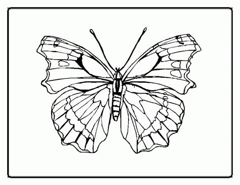 kids coloring butterfly coloring pages butterfly monarch