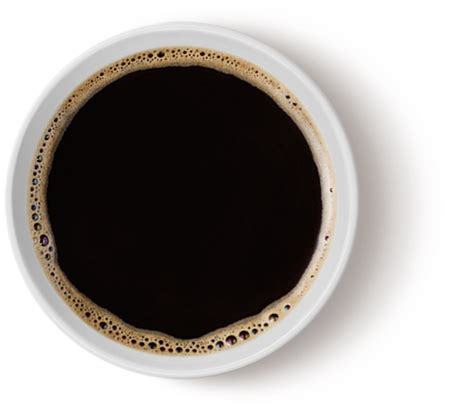 Americano No Sugar Coffee In A Bottle simply great coffee couche tard