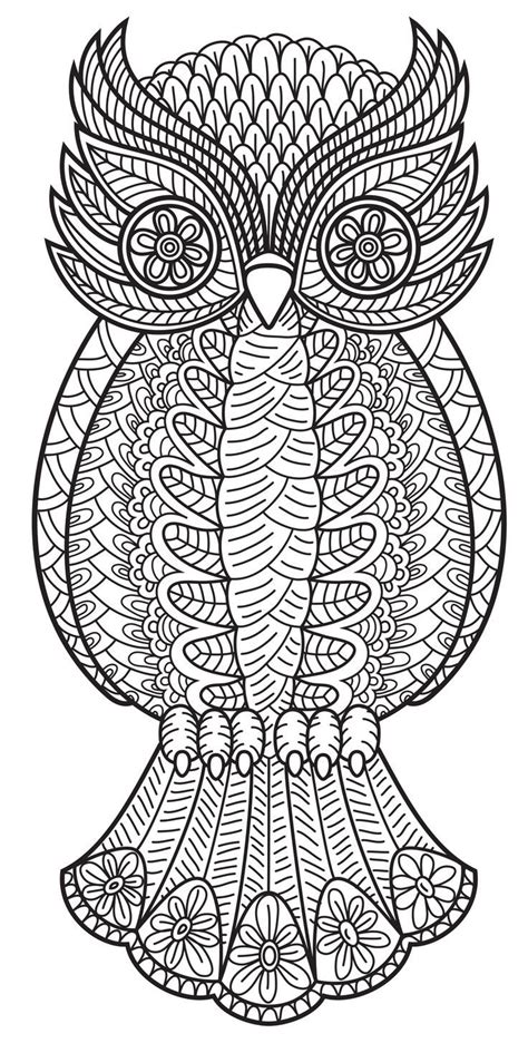 coloring pages for adults pinterest owl coloring pages for adults pinterest everything home
