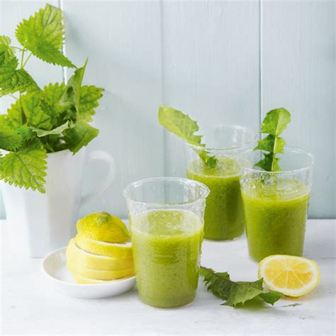 Detox Smoothie Rezepte by Turbo Detox Smoothie Rezept K 252 Cheng 246 Tter