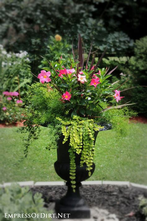 Flower Ideas For Planters by 21 Gorgeous Flower Planter Ideas Empress Of Dirt