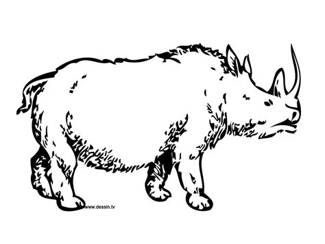 Coloring Pages Of Prehistoric Animals | coloring prehistoric rhino