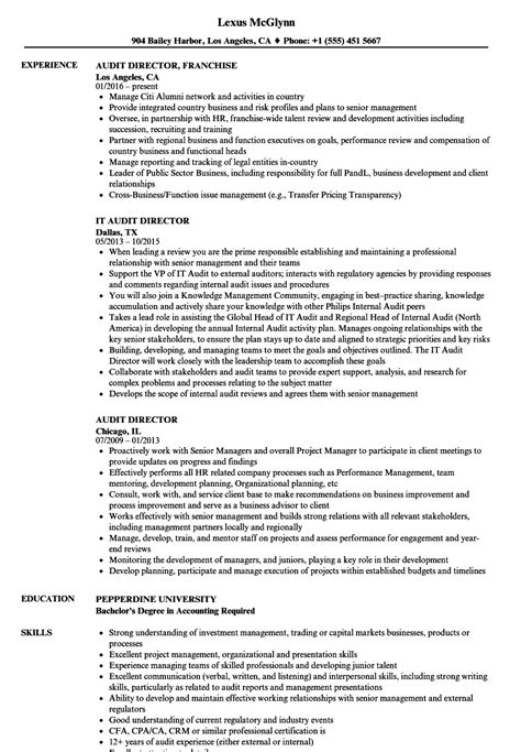 resume exles it manager sle resume with work experience common app essay exles