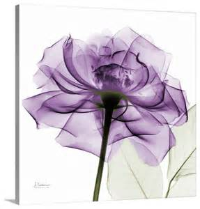 Cyan Design Chandeliers Purple Rose X Ray Photograph Wall Art From Great Big