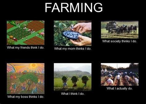 Farmer Meme - 1000 images about funny memes on pinterest milk the