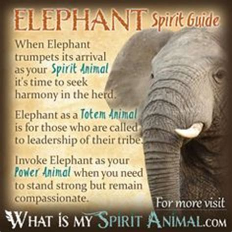 Soapstone Spiritual Meaning 1000 Ideas About Animal Totems On Spirit