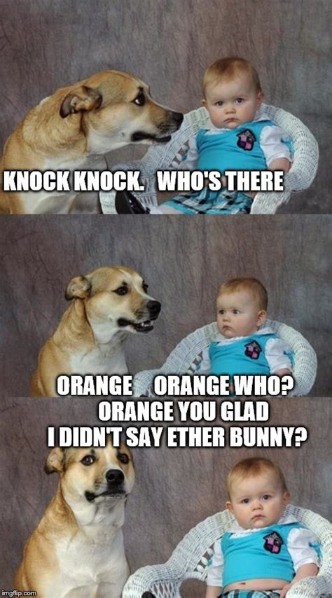 Orange Dog Meme - orange dog meme 28 images 25 best ideas about animal