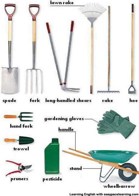 gardening equipment vocabulary  pictures learning english