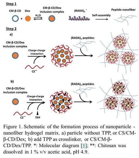 pattern formation in nanoparticle assemblies frontiers controlled release of dexamethasone from in