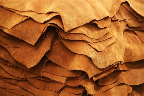 The Leather leather the horrifying facts and green solutions