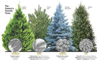 types of artificial christmas trees images